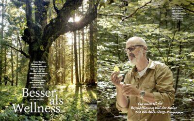Waldbaden mit Peter Wohlleben: Besser als Wellness